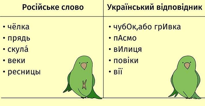 Папужка про риси обличчя